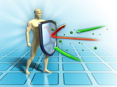Shield Second Line Of Defense Innate Immunity Is The Subsystem