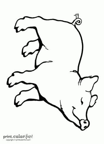 charlotte\'s web coloring pages | ... Fun! Free printables, coloring ...