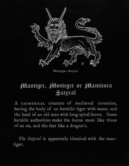 """John Vinycomb - Mantygre (Satyral), """"Fictitious and Symbolic Creatures in Art"""", 1906.   http://40.media.tumblr.com/e1e1c274fab21e69b4604c8f4d898e77/tumblr_nv8bw31J7X1qg20oho1_500.jpg"""