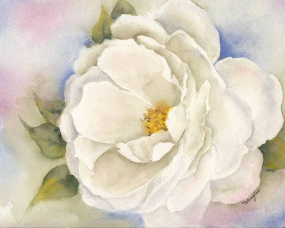 Original Watercolor Painting  White Camelia  8x10 by ImaginIt43