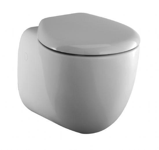Swell Ideal Standard Small Toilet Seat T638501Seat And Cover Soft Bralicious Painted Fabric Chair Ideas Braliciousco