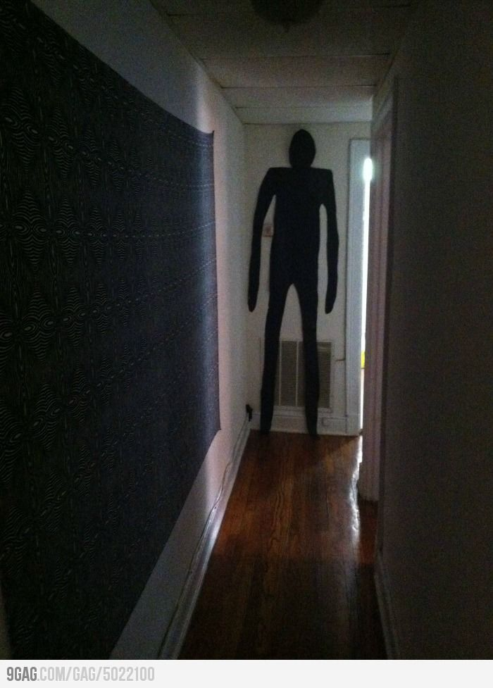Can I just say if I came home to a dark house and saw this at the end of the hallway there would be bullet holes in the wall.