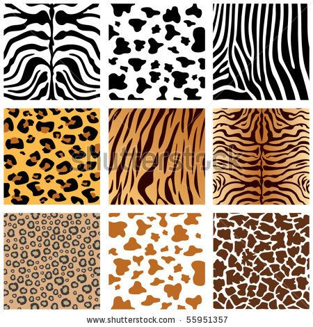 stock vector : Animal Skins