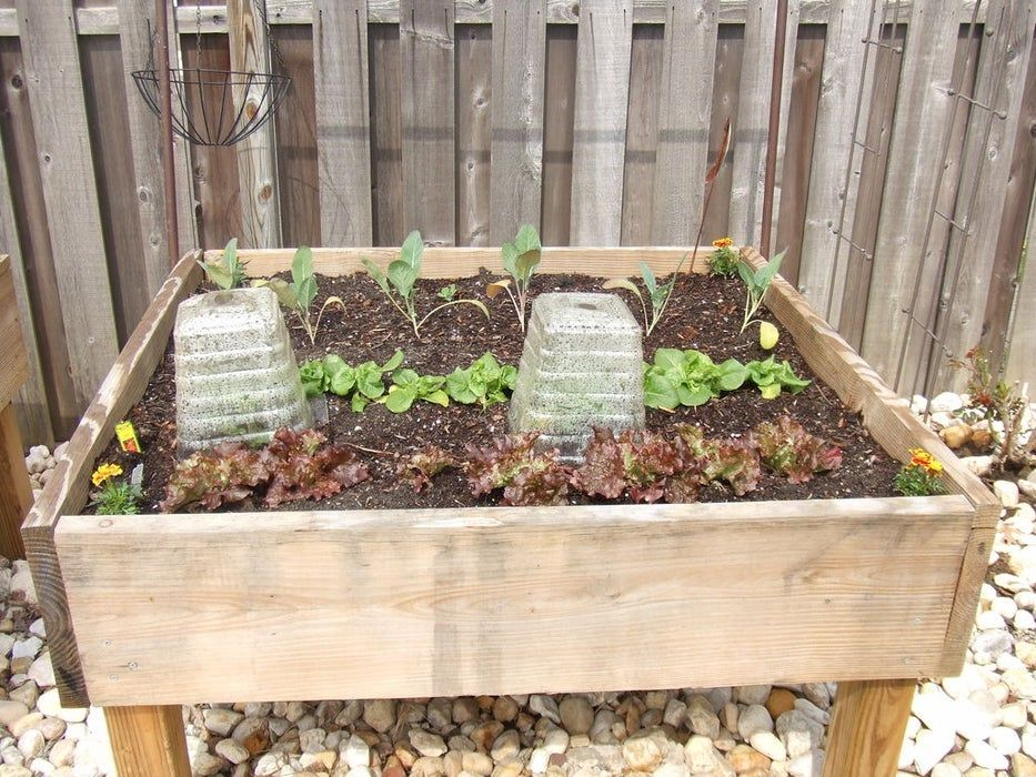 Raised Garden Bed on Legs! in 2020 Raised garden beds