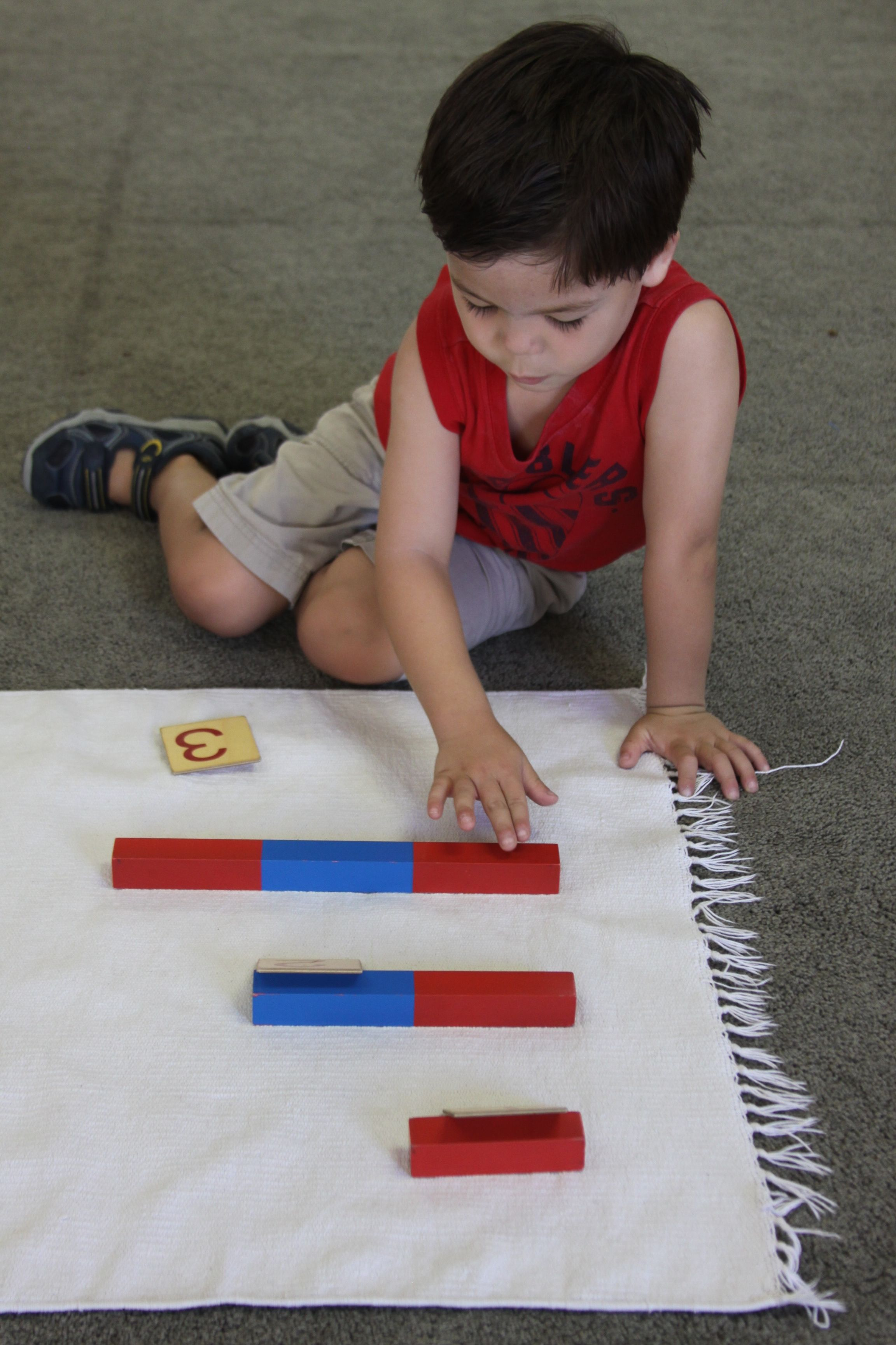 The number rods.  Learning that 3 is more than 2 and 1.