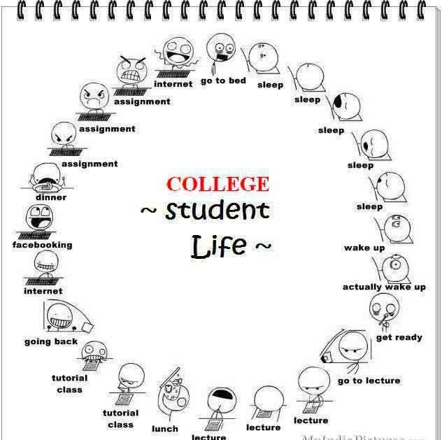 College Student 6 Student Life Funny College Jokes Student Life