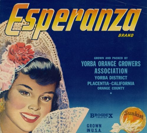 CAMBRIA~VINTAGE 1930s PLACENTIA ORANGE COUNTY CALIFORNIA LEMON FRUIT CRATE LABEL