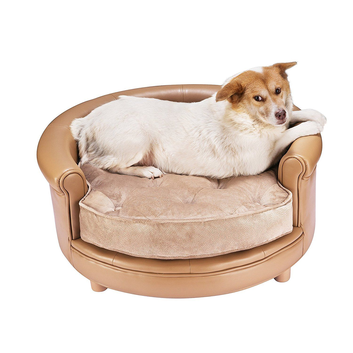 Stylish Birch Dog Bed With Pillow Topper Canada Pooch Stylish Dog Beds Dog Bed Cozy Dog Bed