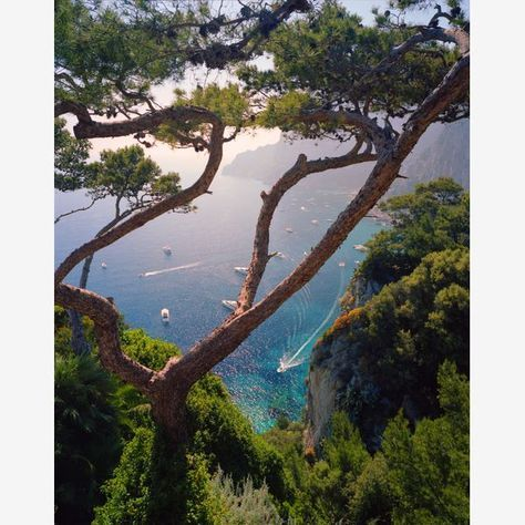 Capri, Italy, The World's Most Beautiful Islands