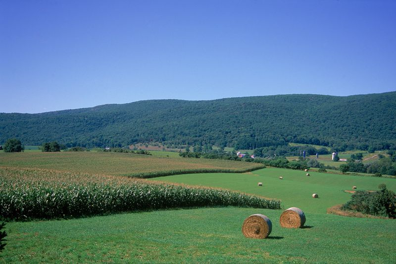 Best Places for Fall Camping in Vermont in 2020   Vermont ...