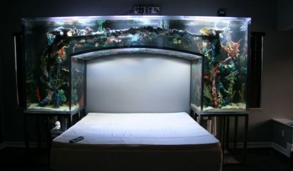 The ultimate headboard aquarium fish tank aquariums for Fish tank bed