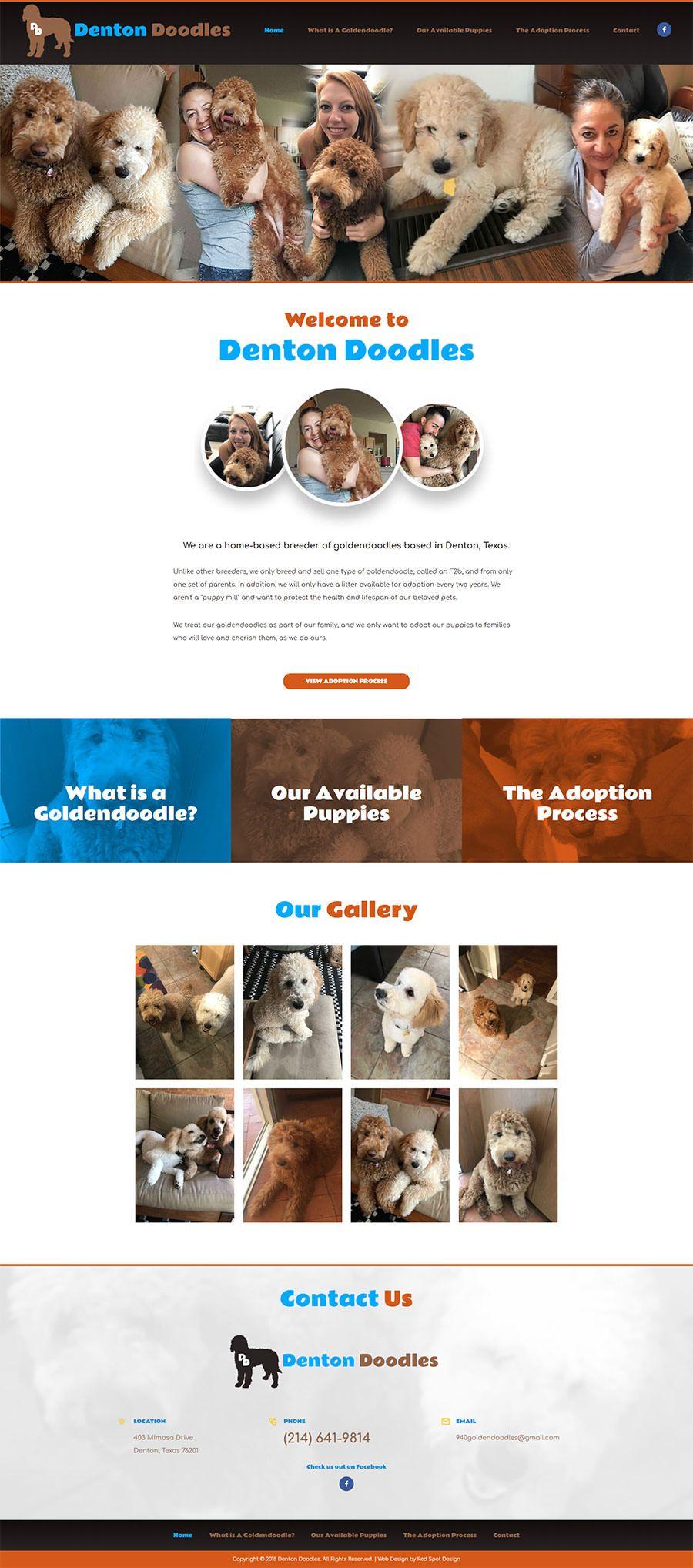 Golden Doodle Puppies for Sale Denton Texas https//www