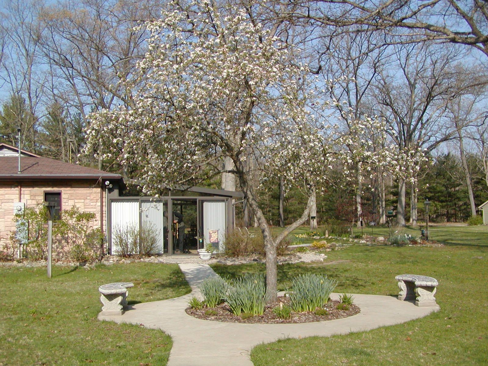 apple tree meditation garden - Google Search