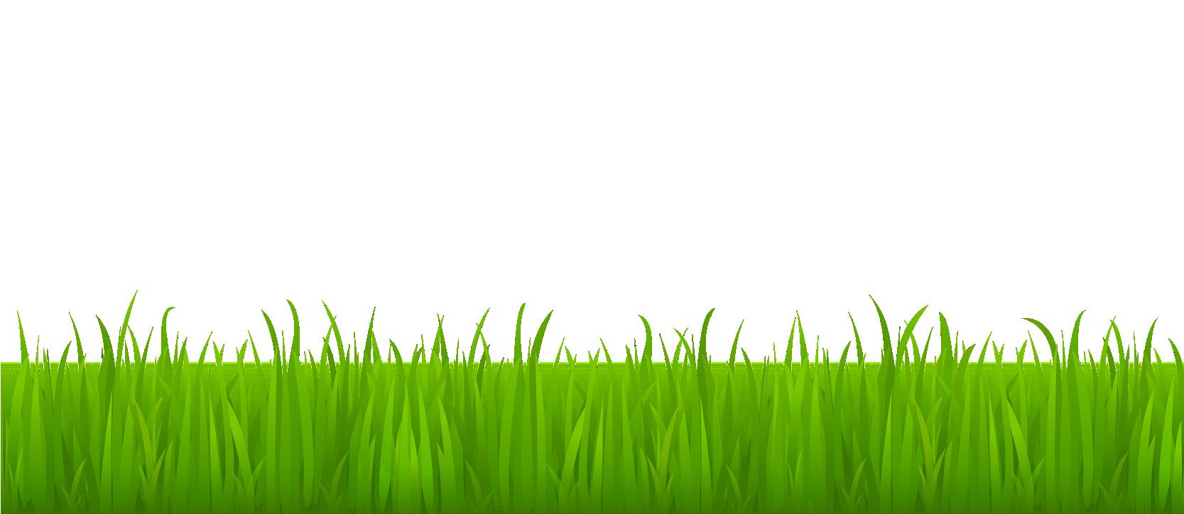 Imagenes Png Buscar Con Google Grass Clipart Grass Vector Spring Grass