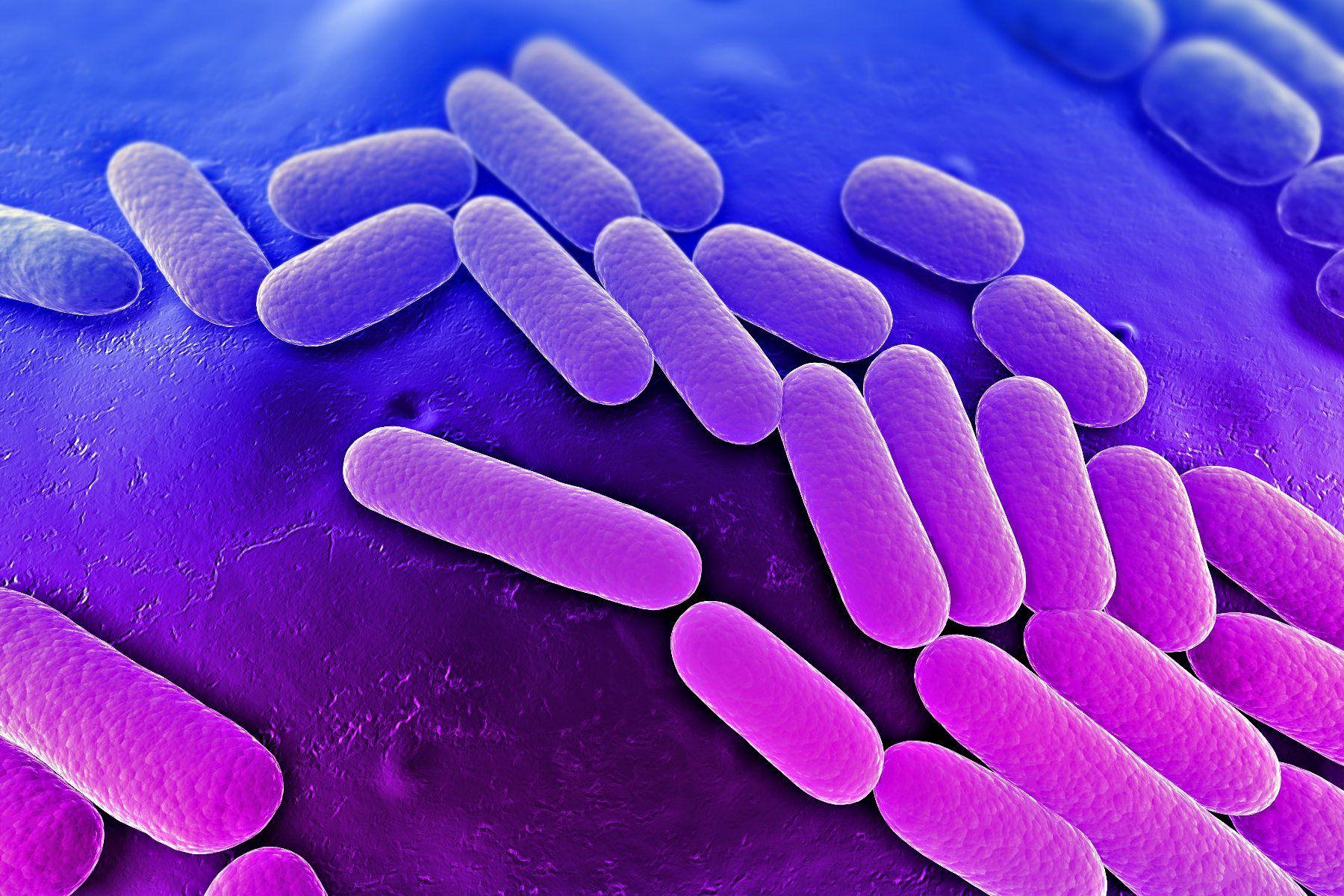 enfermedad bacteriana lepra