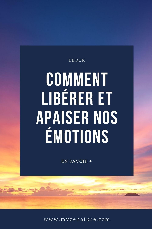 Comment Liberer Et Apaiser Nos Emotions En 2021 Emotions Gerer Ses Emotions E Book