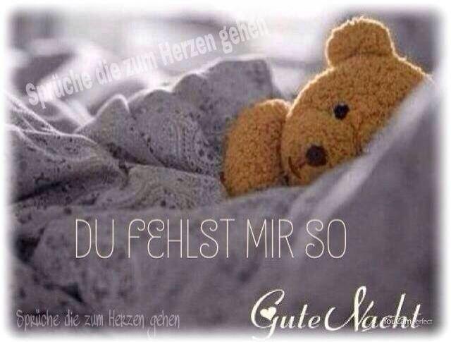 Following the Dich Gute Nacht Liebe downloads
