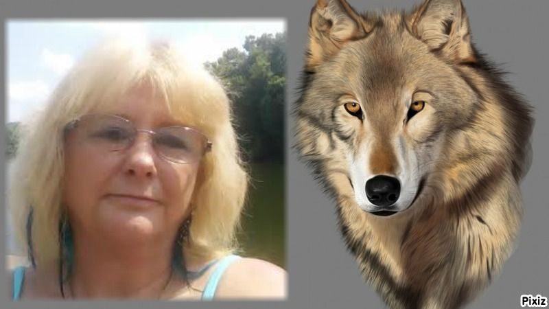 Photo montage's result : wolf - Pixiz | me and things i make and