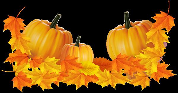 Transparent Thanksgiving Pumpkin Decor Clipart Pumpkin