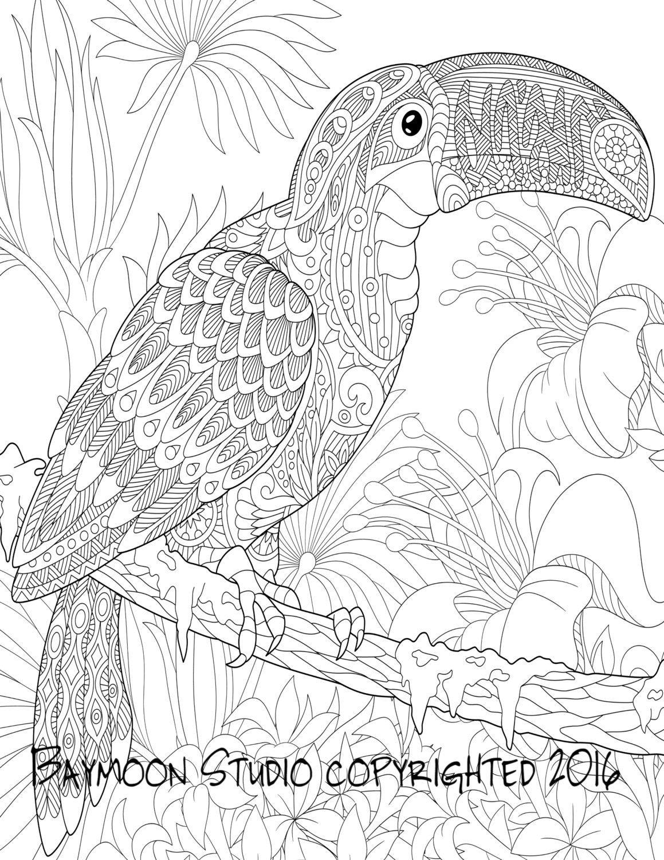 Tucán colorear página páginas imprimibles para por BAYMOONSTUDIO ...