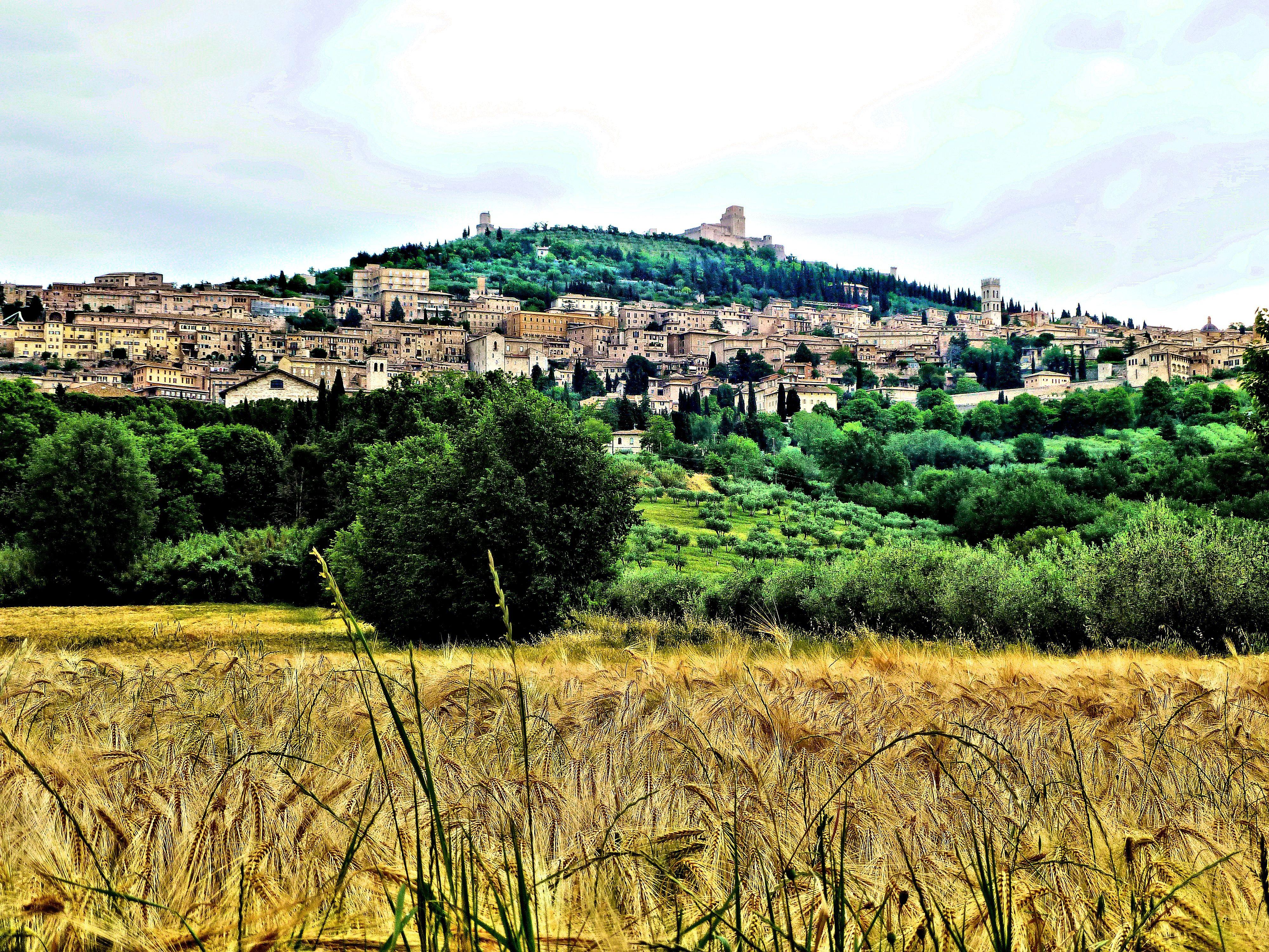 "Assisi panorama blog John en Pieter ""Sogno Italiano"""