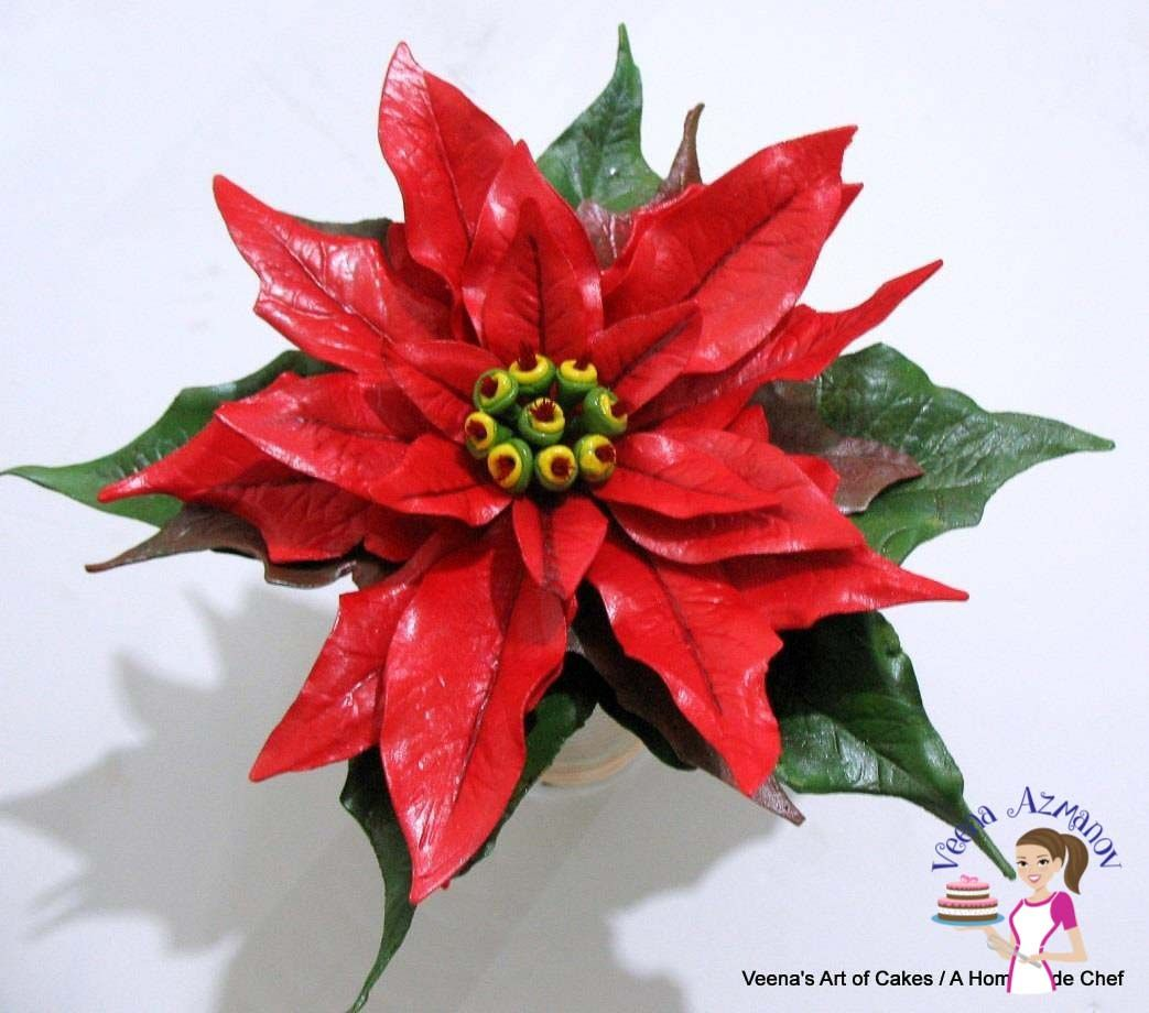 The gum paste Poinsettia is a very impressive Christmas flower and ...