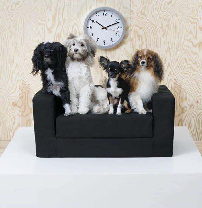 cosas para perros en ikea