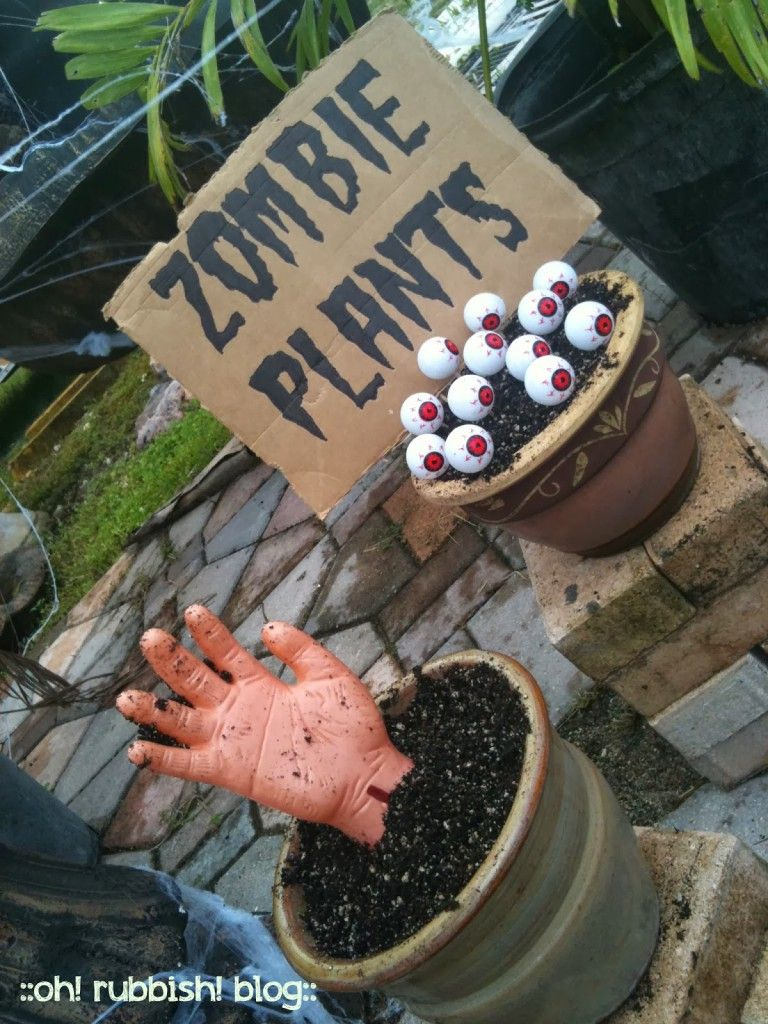 DIY Zombie Plants by oh! rubbish! blog H - Halloween Pinterest - Halloween House Decorating Ideas Outside