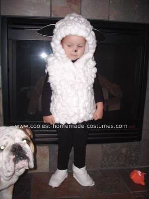 Homemade Lamb / Sheep Costume Here is what I used to make this costume Cotton balls - 350 (2.5 bags - 140 cotton balls in 1 bag) White hooded jacket 1 ...  sc 1 st  Pinterest & Coolest Lamb / Sheep Costume | Pinterest | Sheep costumes Black ...