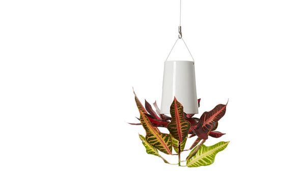 Vervaardigd uit hoogwaardig aardewerk keramiek en verkrijgbaar in drie maten met bevestiging aan plafond of muur. Sky Planter creëert een prachtige aanwinst voor ieder interieur.