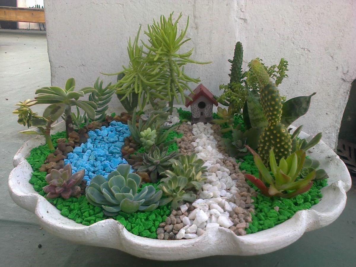 Resultado de imagen para como hacer un mini jardin con cactus ...