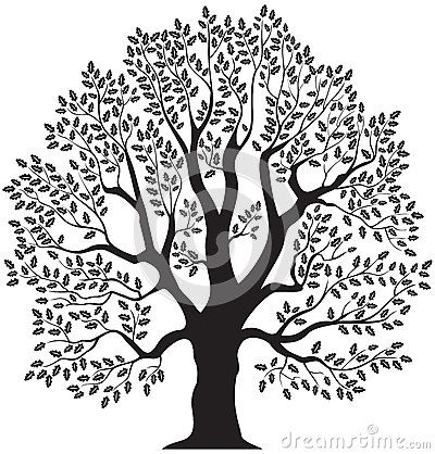 Tree Stock Illustrations Vectors Clipart