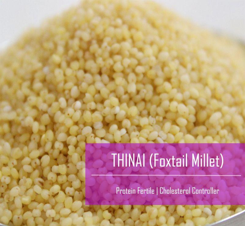 Foxtail Millet / Kangni /Thinai