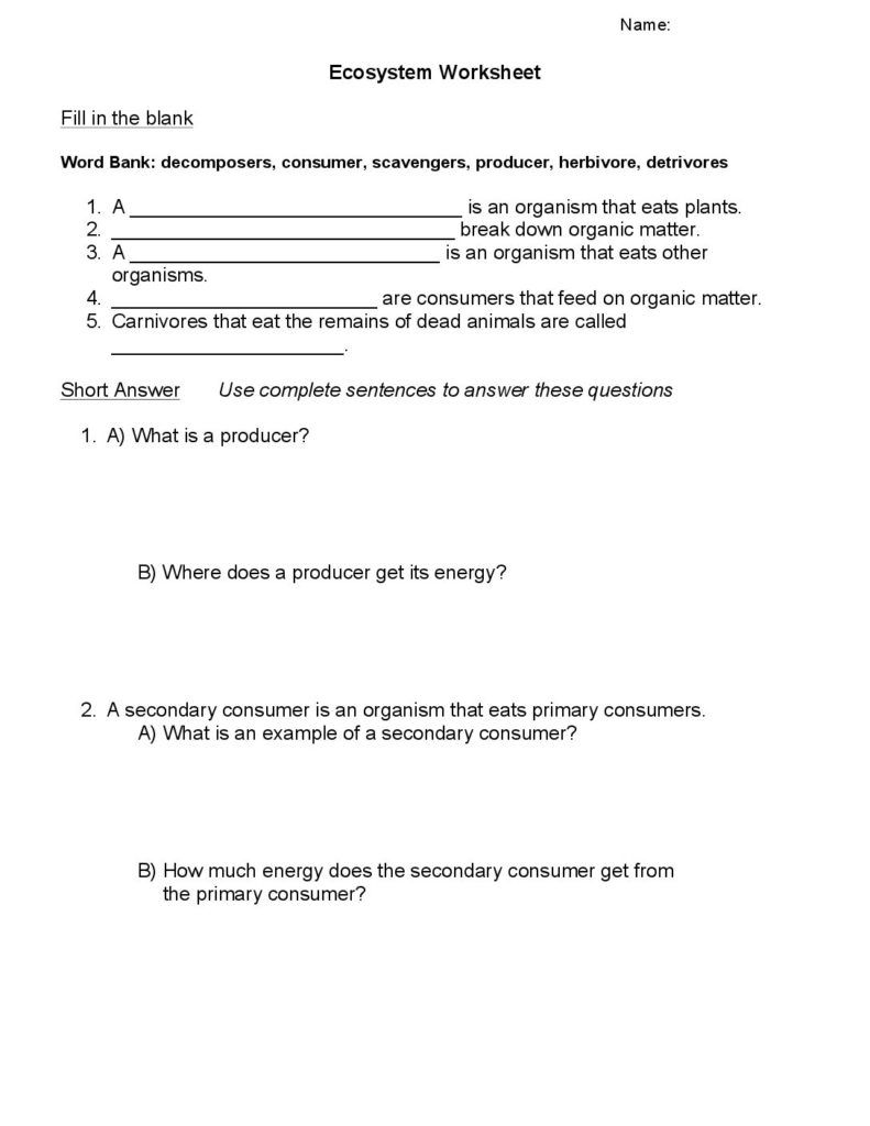 Ecosystems  Worksheet  SncD  Biology  Sustainable Ecosystems