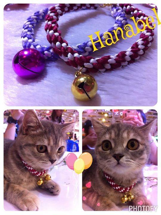 My Shop & DIY Accessories, Headdress, Necklace&Choker, Chinese Knots, กำไลข้อมือเพื่อนเจ้าสาว etc. Make to Order.