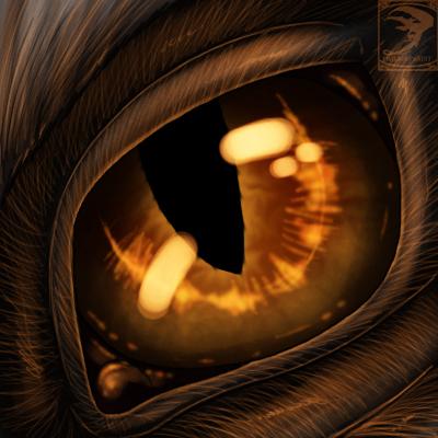 Dragon S Eye Dragon Eyes Dragon Eye Drawing Dragon Eye Eye Drawing