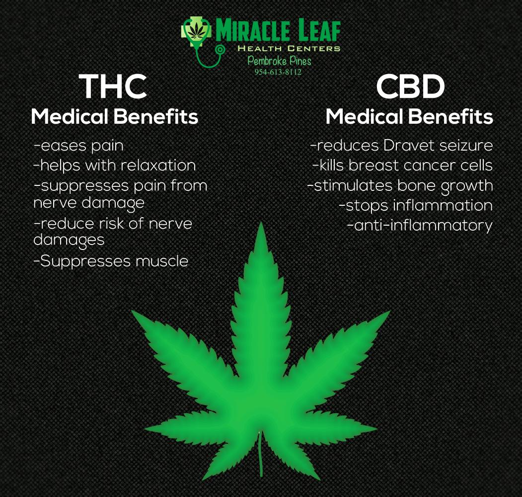 Cbd Benefits Leaf Health Cancer Cell Nerve Damage