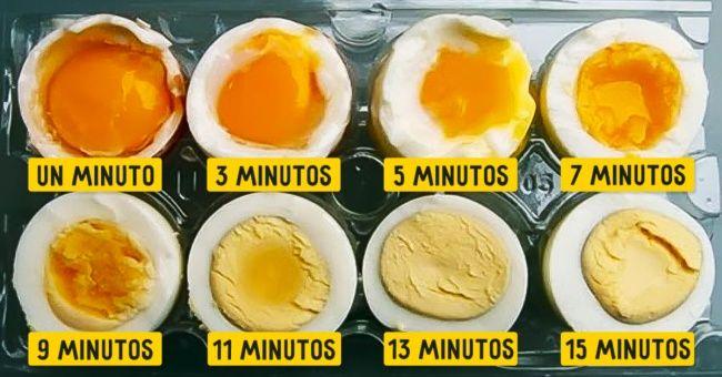 Tiempo huevos tibios
