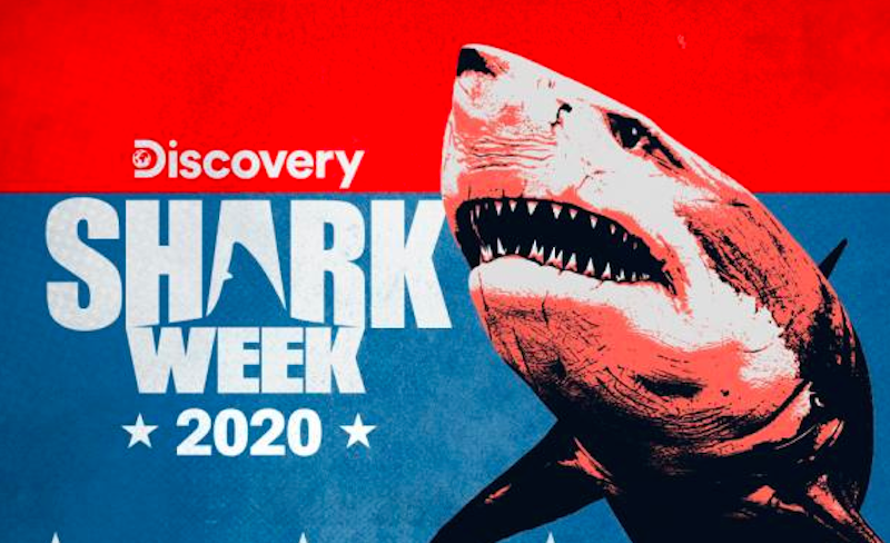 How To Watch Shark Week 2020 Live Online Without Cable In 2020 Shark Week Shark Discovery Shark Week
