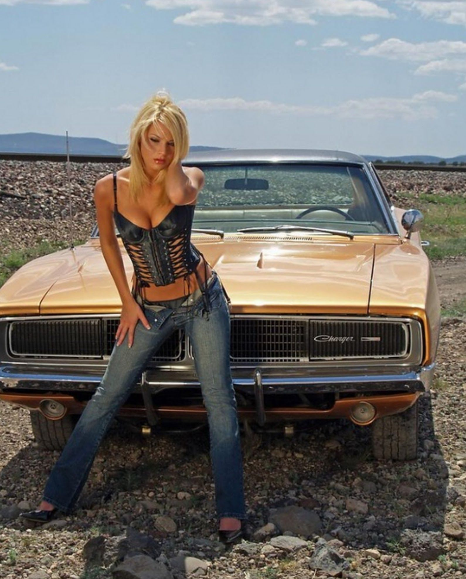 For Dodge charger hot girls consider, that