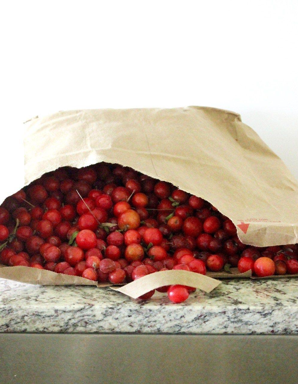 Low Sugar Wild Plum Jam Recipe Recipes Pinterest Plum Jam