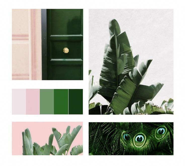 Colour Scheme Emerald Green Sage Green Blush Pink: Emerald Green And Blush Pink Spring 2018 Interior Design