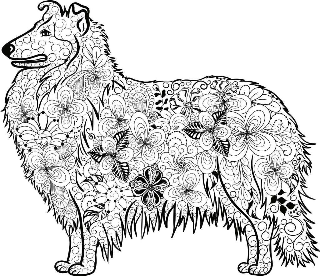 Kostenloses Ausmalbild Hund - Collie Die gratis Mandala