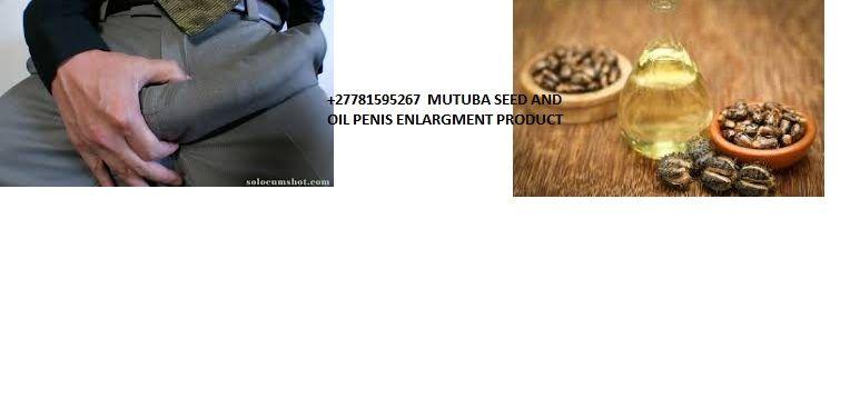 Angola Luanda Men Products Use Mutuba Oil For Man Hood Enlarger