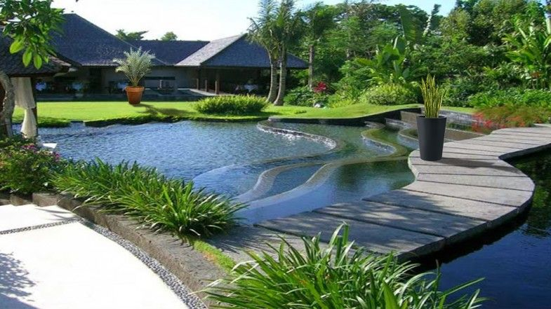 how to create water garden? tips: ricola nunoni
