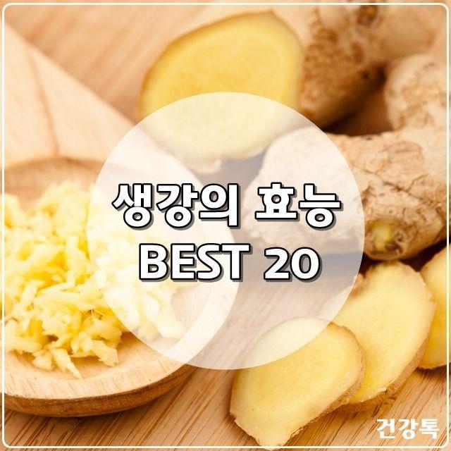 관절에 좋은 약초 7가지 식품 과학 식품 아이디어 음식