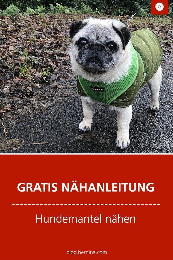 Photo of Hundemantel nähen – Freebie-Anleitung und Schnittmuster-Konstruktion