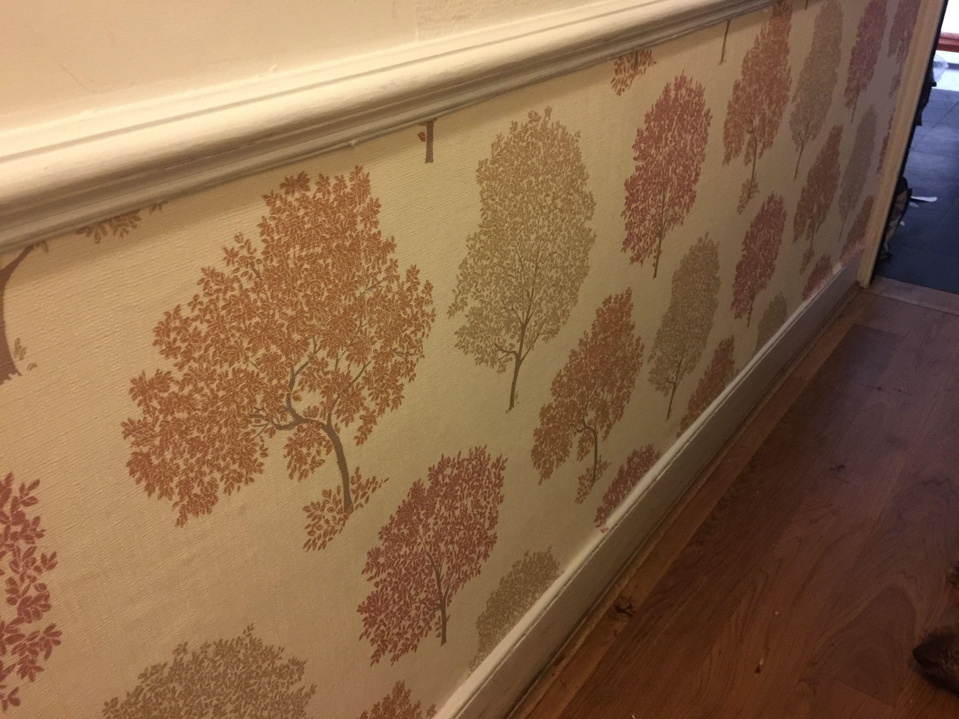 Ashley Tree Copper Wallpaper from Homebase. Copper