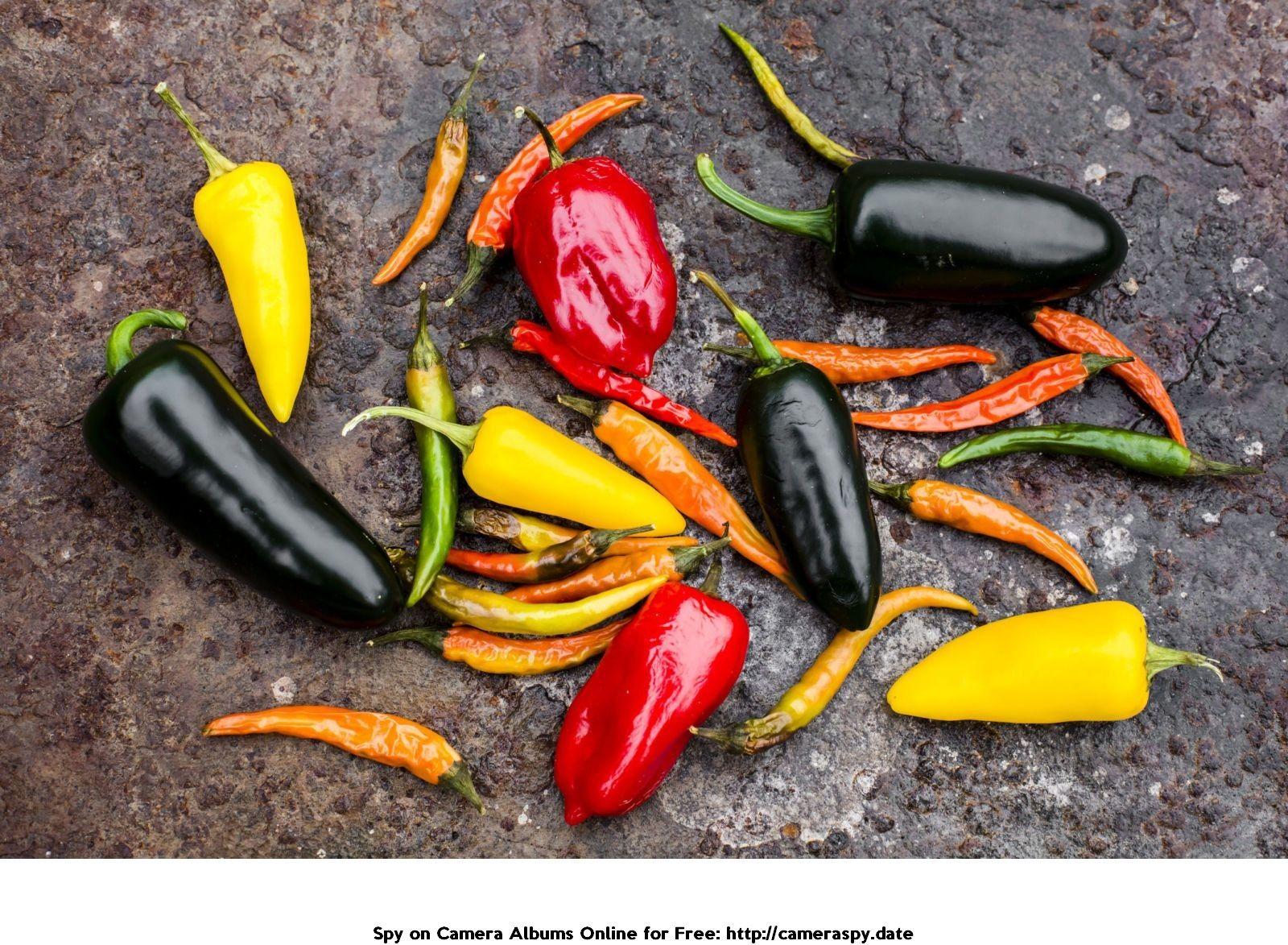 Black mamba fat burner best price in india