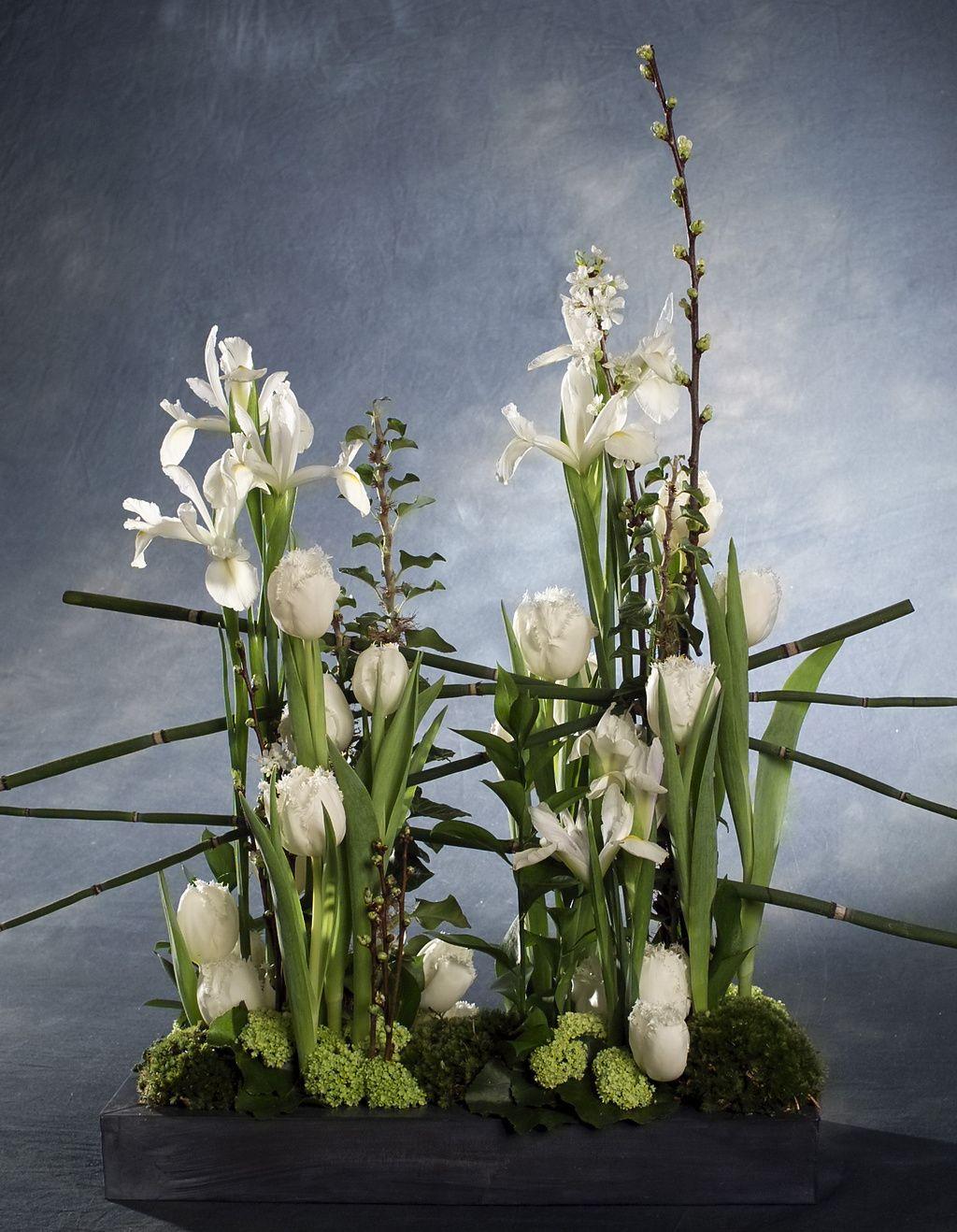 Ricerca | Flower Council